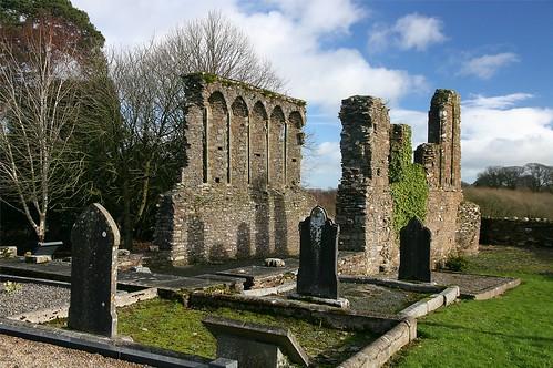 Ruin in Ferns