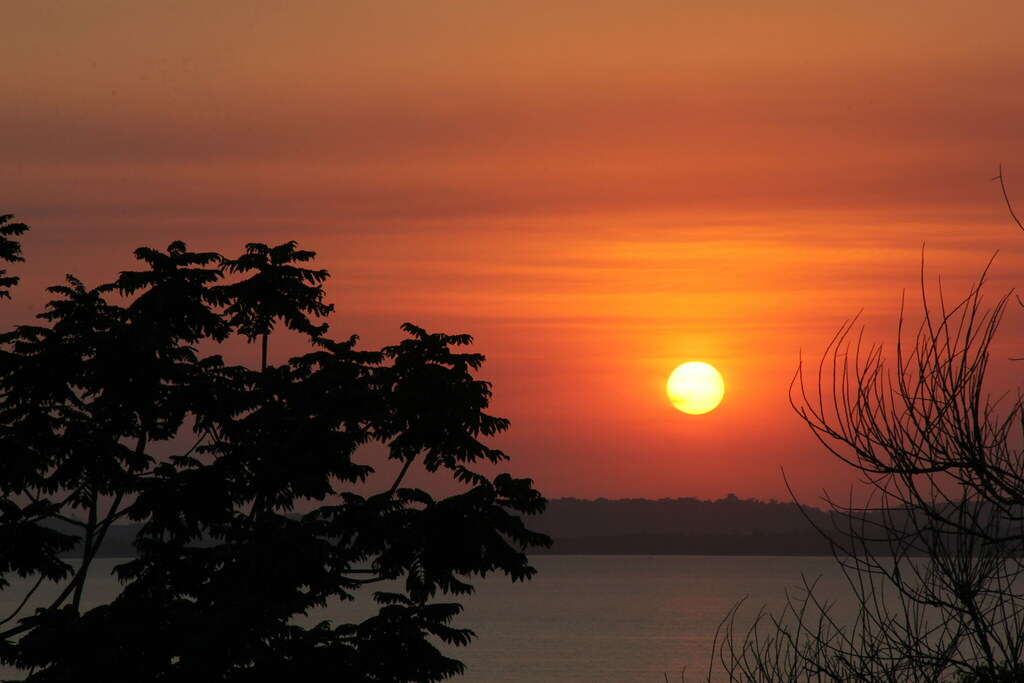 Sunset over Lake Victoria, Blue Monkey, Entebbe