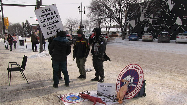 National Anti Fur Day Edmonton