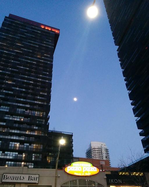 Moon among condos and streetlight #toronto #yongeandeglinton #yongestreet #condo #towers #skyline #moon #blue