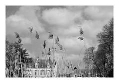 Flotte dans le vent... - Photo of Santeuil