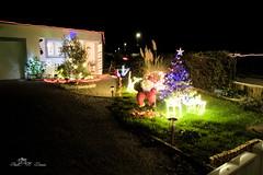 Noël la Guyonniere (Nord Vendée )