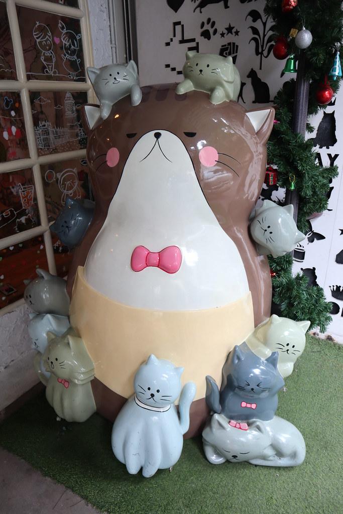 Caturday cat cafe (2)