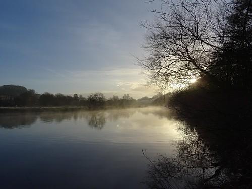 water meadow grass tree sky cloud mist sun sunrise reflection riverside walk snipe island river dart totnes devon uk