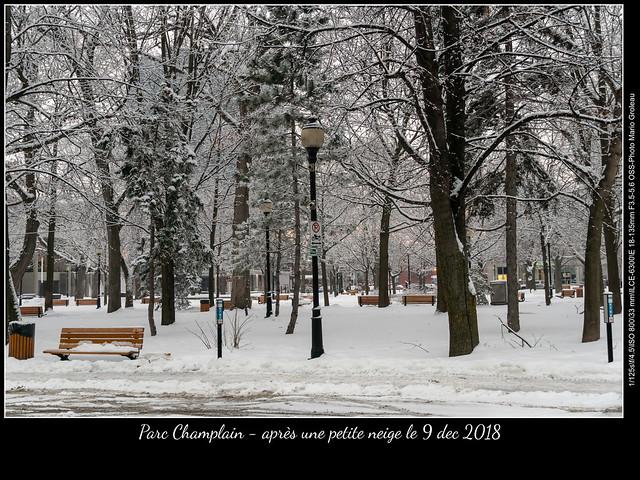 Parc Champlain - après une petite neige le 9 dec 2018