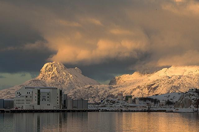 Bodø harbour