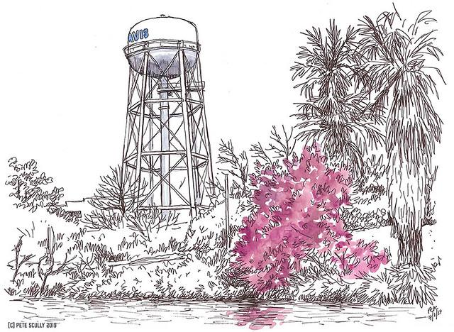 Arboretum Sketch 040119