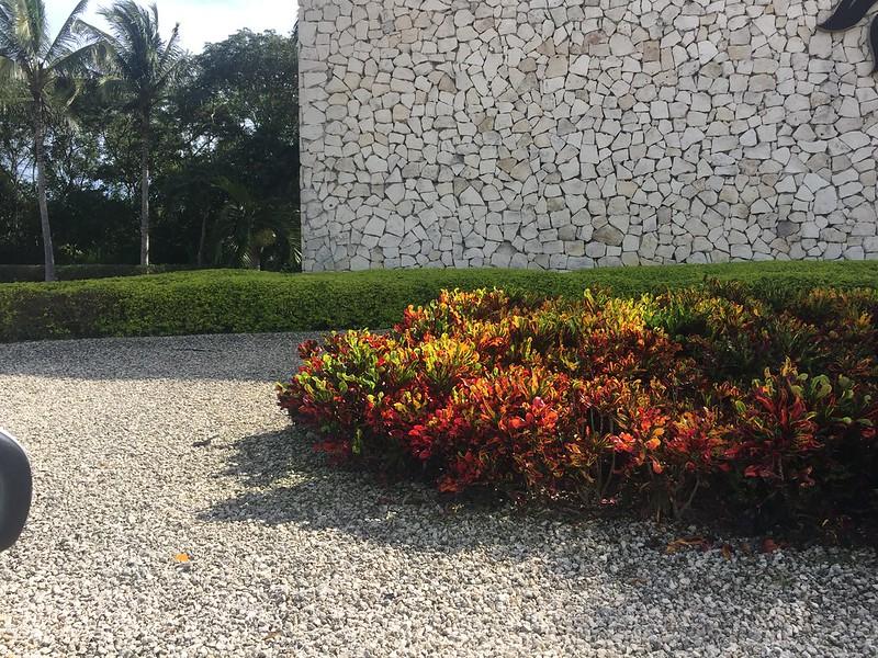 Casa Colorida