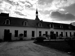 Haras de montier en Der - Photo of Longeville-sur-la-Laines