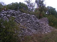 20080914 36783 1015 Jakobus Buchsbaum Steinmauer - Photo of Espagnac-Sainte-Eulalie