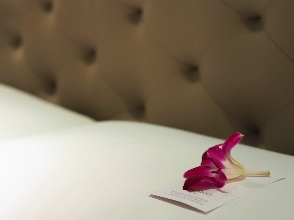 曼谷THE ATHENEE HOTEL (22)