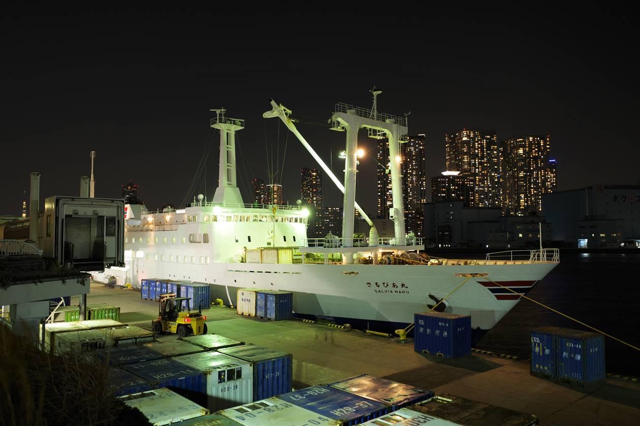 伊豆大島行き大型客船・さるびあ丸