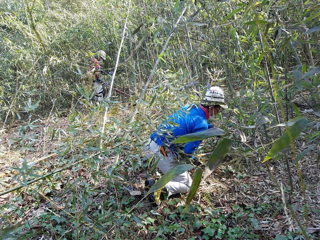浪江町で竹林伐採のお手伝い 南相馬で仮設住宅引越のお手伝い(援人 2019年 0315-17便)
