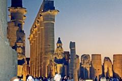 1999.10.076 LOUXOR - Le  temple -  colonnades d'Aménophis III de nuit