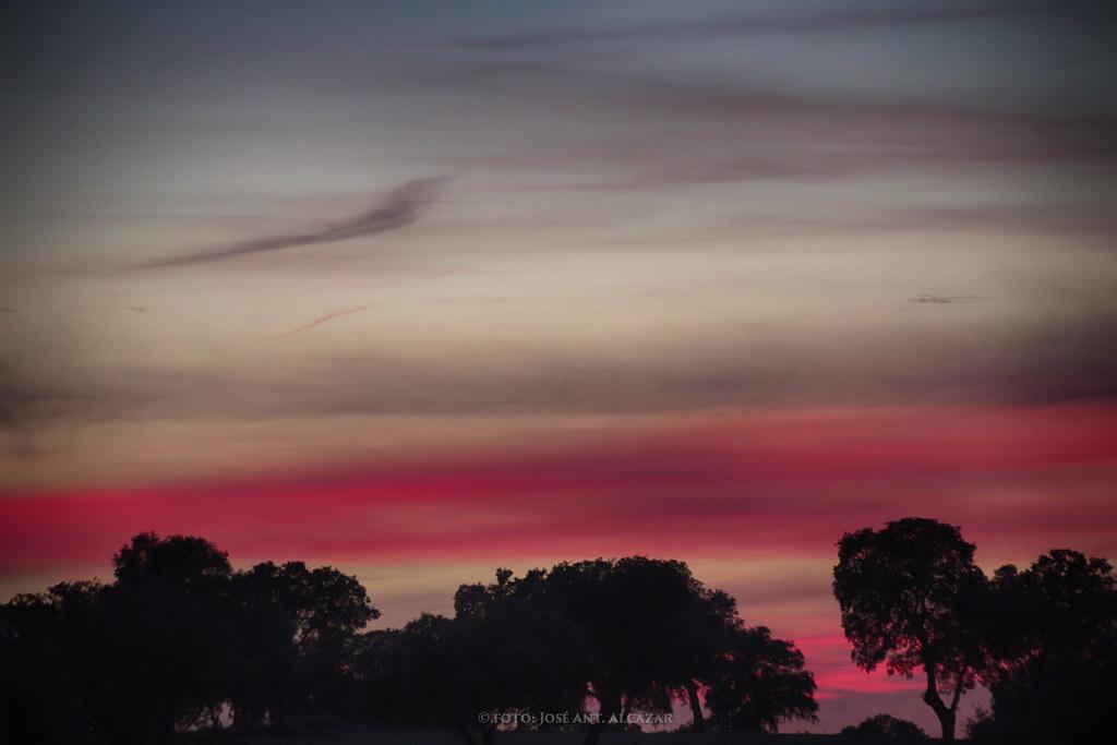 Puesta de sol en la Dehesa de Zacatena (Daimiel)
