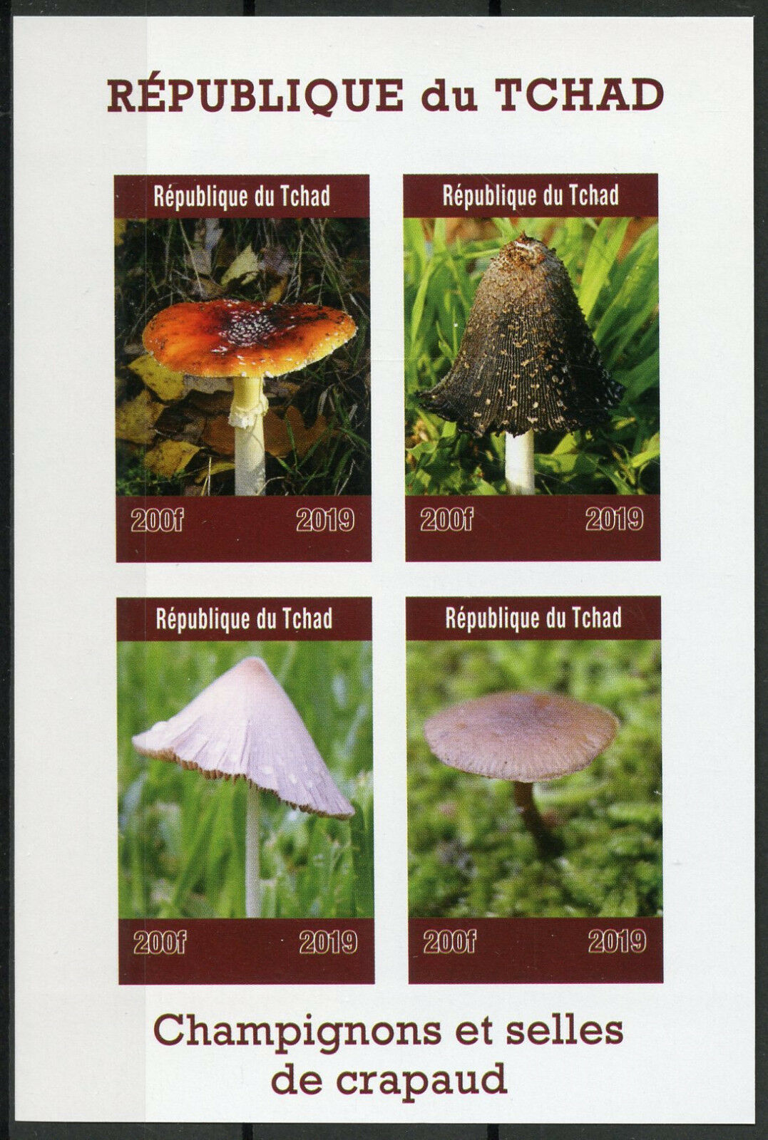 Republic of Chad - Mushrooms and Toadstools (January 1, 2019) sheet of 4, imperforate