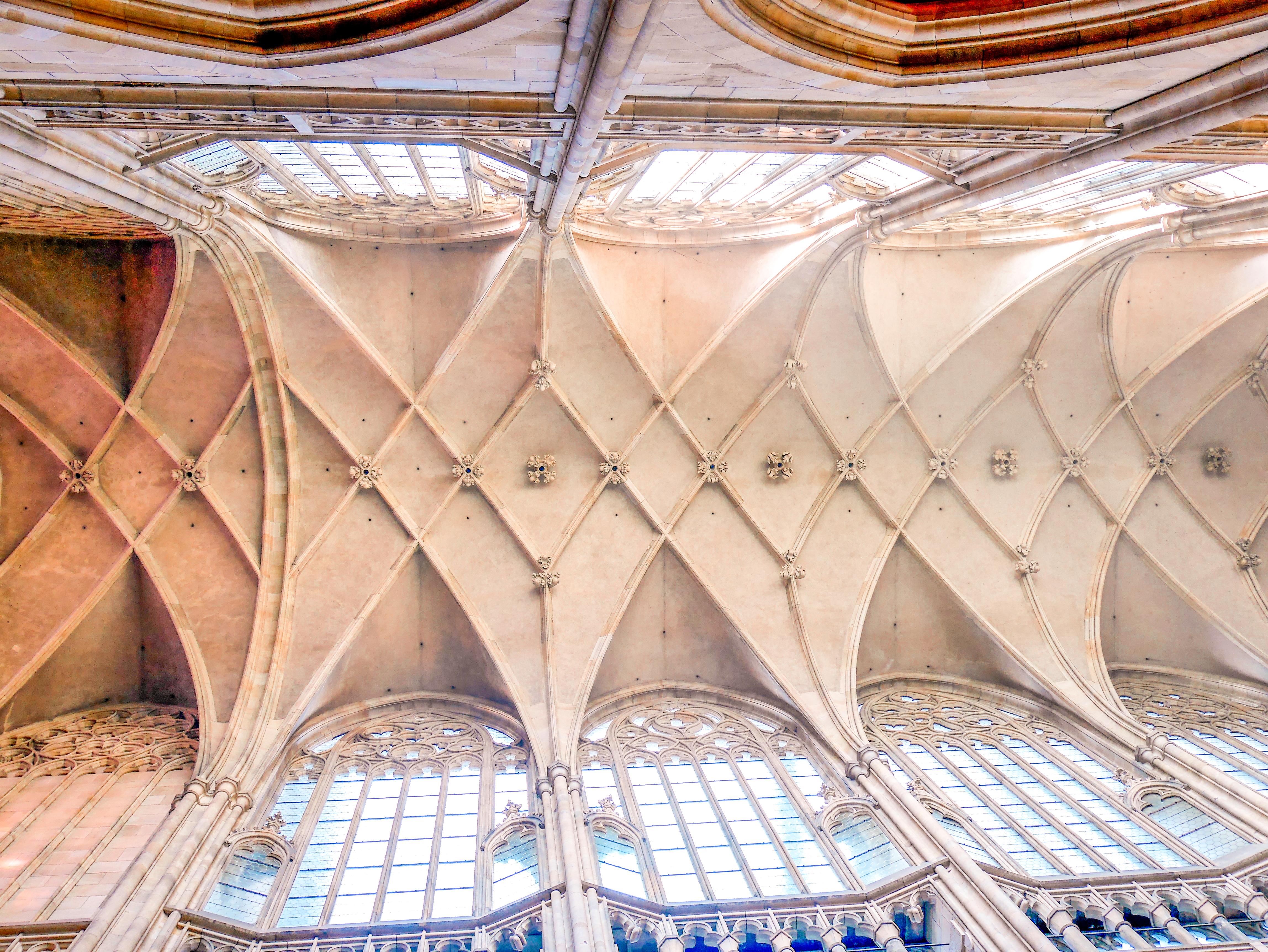 Vituksen katedraalin katto