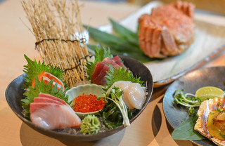 Mixed sliced fish sashimi on ice in bowl | by phuong.sg@gmail.com