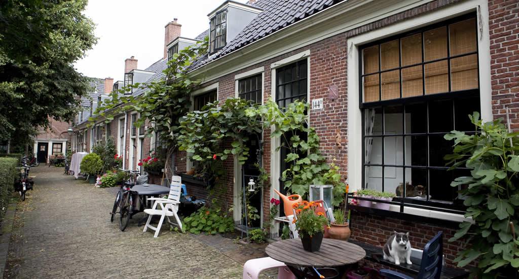 Weekendje Haarlem: gratis hofjes wandeling | Mooistestedentrips.nl