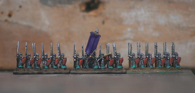[Armée] Mes Elfes-Noirs - Page 3 32399556277_d08c19a219_c