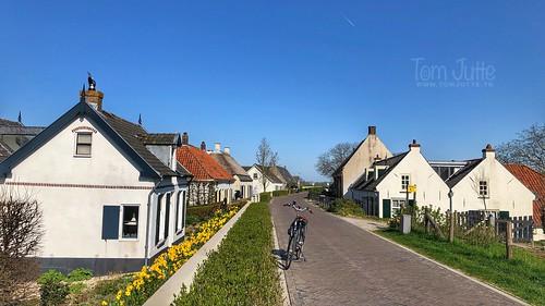 Spring in Rijswijk, Gelderland, Netherlands - 2365