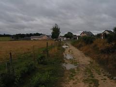 20080906 31491 1007 Jakobus Hügel Wald Wiese Bäume Zaun RegenPfütze Weg