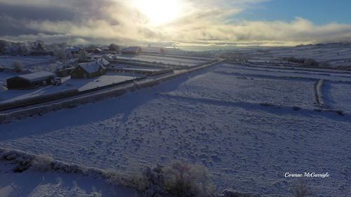 Snowy Sights