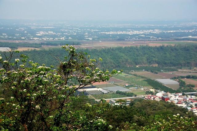 笠頂山俯瞰屏東平原 1