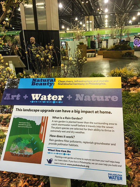'Natural Beauty': Philadelphia Water Department at the 2019 Flower Show