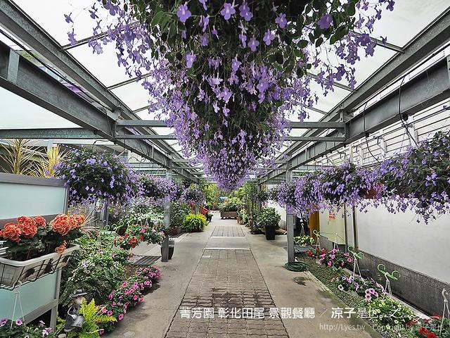 菁芳園 彰化田尾 景觀餐廳 24