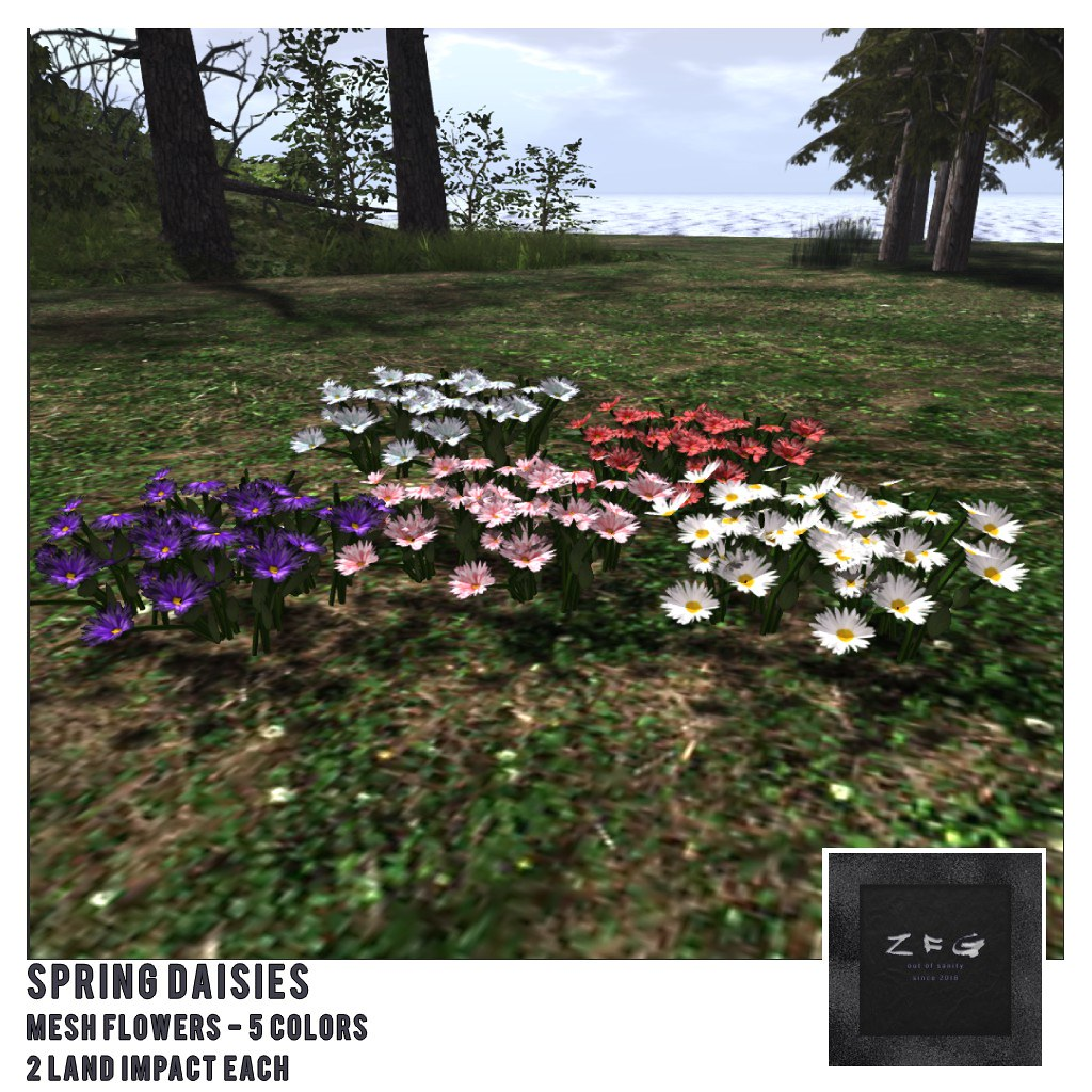 {zfg} home spring daisies
