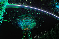 Light show in Gardens by the Bay. Singapore
