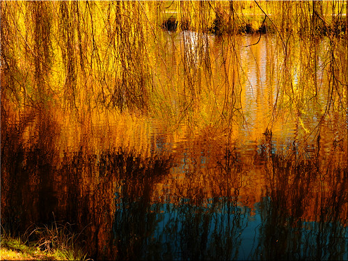 Spring reflections in the spa gardens of Timmendorfer Strand