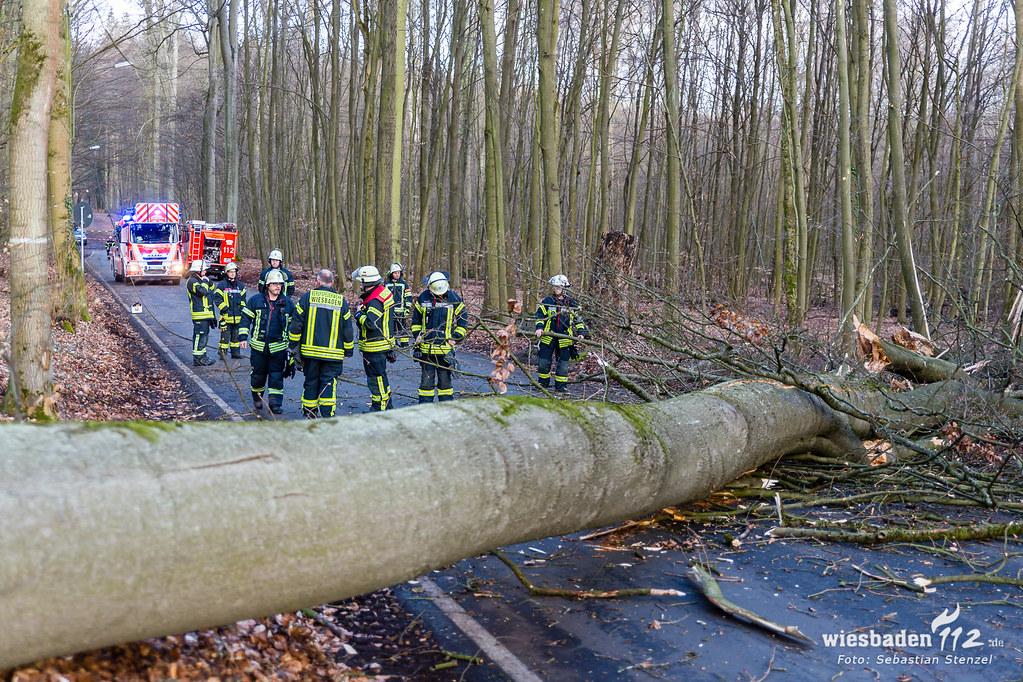 "Sturmtief ""Eberhard"" Wiesbaden/Rheingau-Taunus 10.03.19"