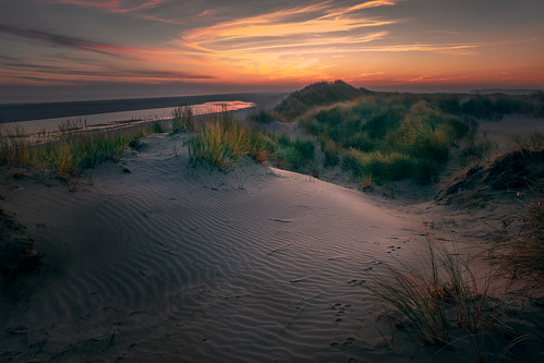 The dunes of Ameland, Netherlands