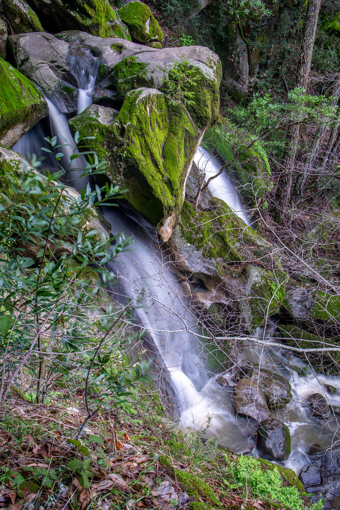 02.10. Long Ridge: Peters Creek Falls