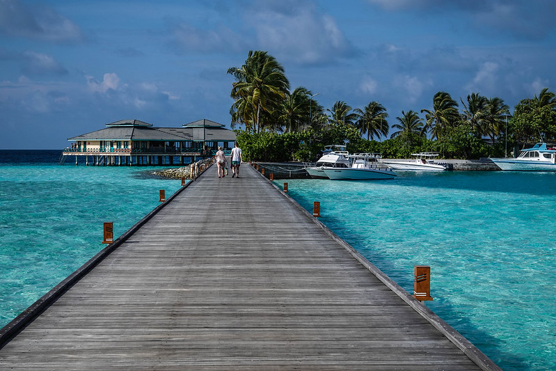 The path to snorkeling