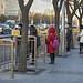 Bus Stops in Peking
