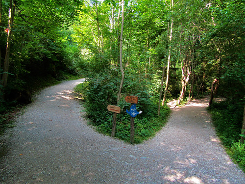 hiking trail in Ziegelwies