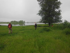 PSU Field Methods class recording sites on Sauvie Island