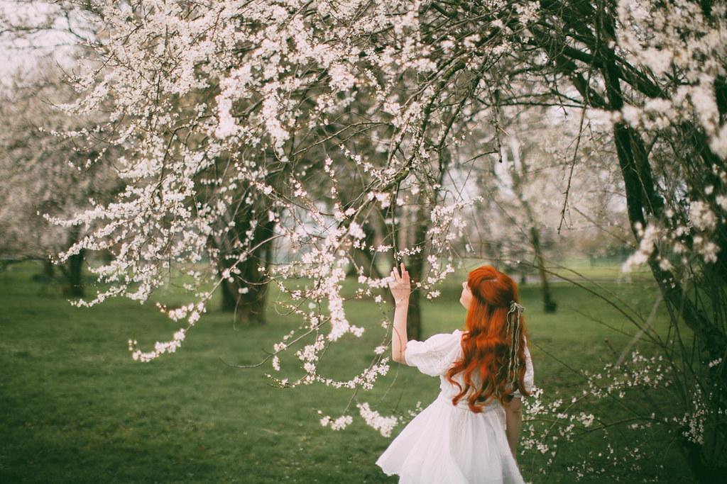 white blossom-10