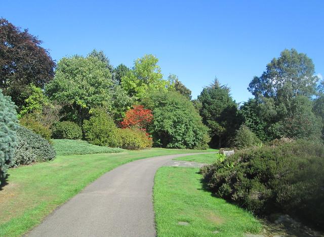 Dundee Botanic Garden path