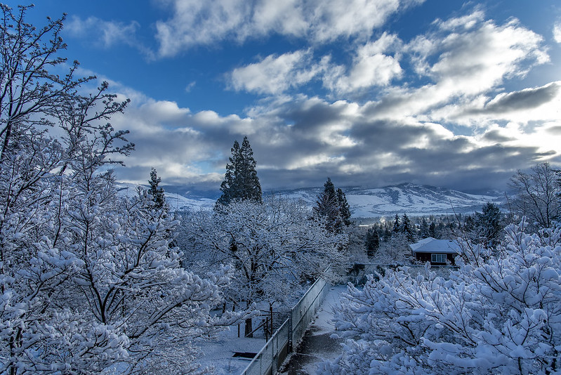 Snowy morning in Ashland, Oregon