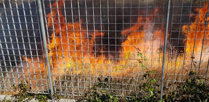 incendio-vicino-area-servizio-sala-consilina-2