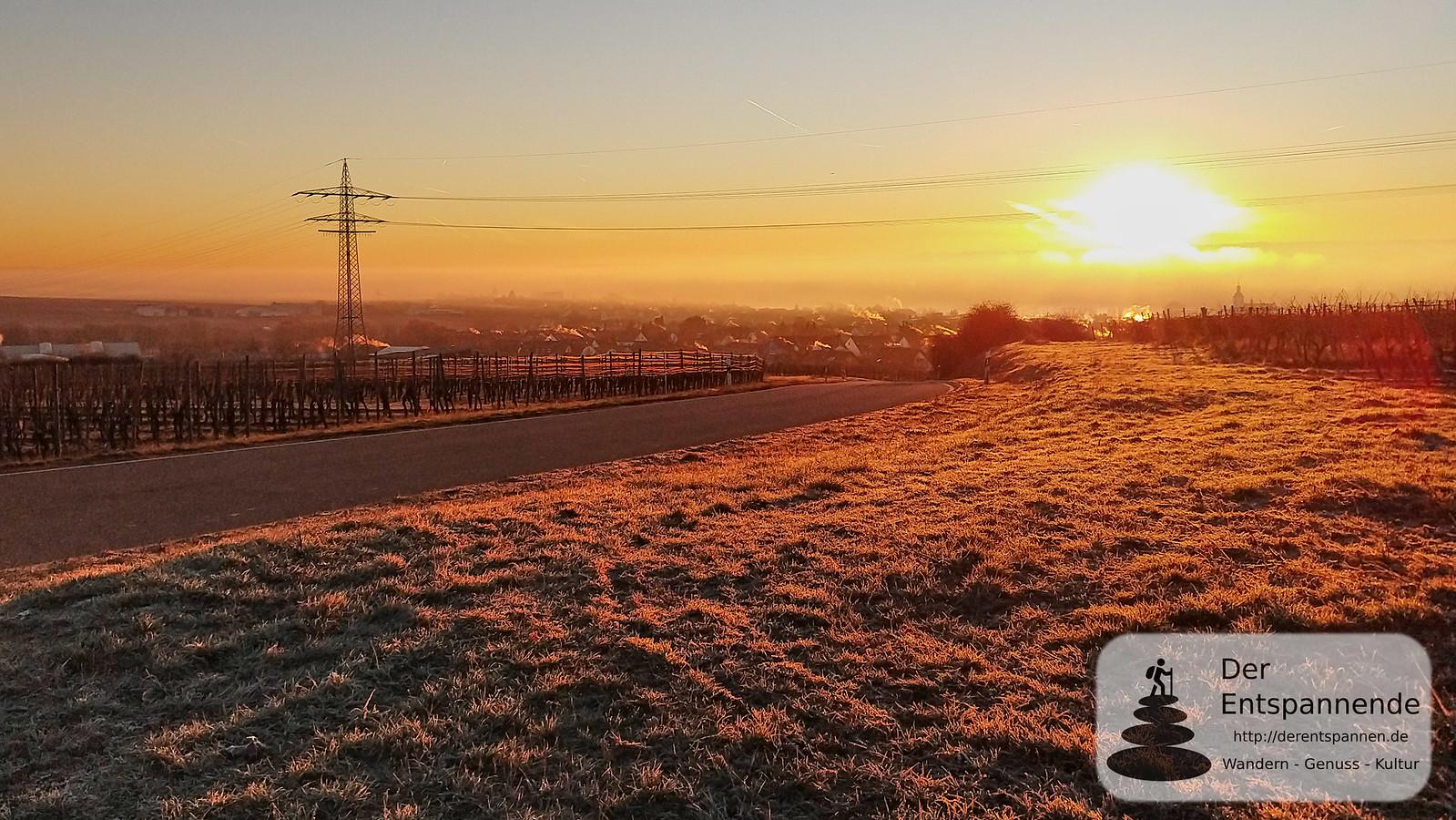 Sonnenaufgang über Oestrich-Winkel