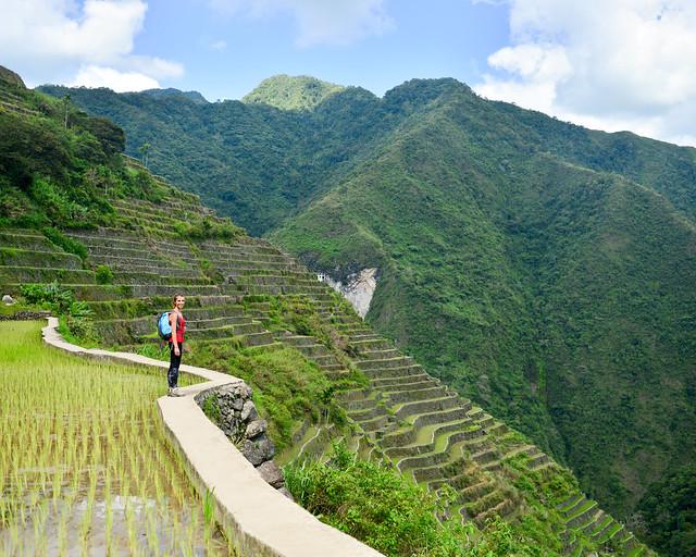 Una de las terrazas de arroz y al fondo del valle de Tappiya