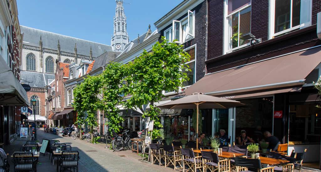 Bezienswaardigheden Haarlem: St. Bavo kathedraal | Mooistestedentrips.nl
