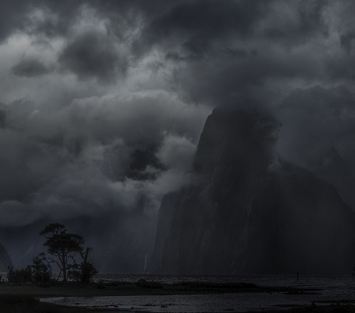 Facing the Storm: Milford Sound, New Zealand