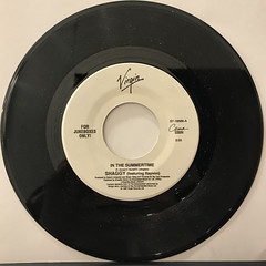 SHAGGY FEATURING RAYVON:IN THE SUMMERTIME(RECORD SIDE-A)