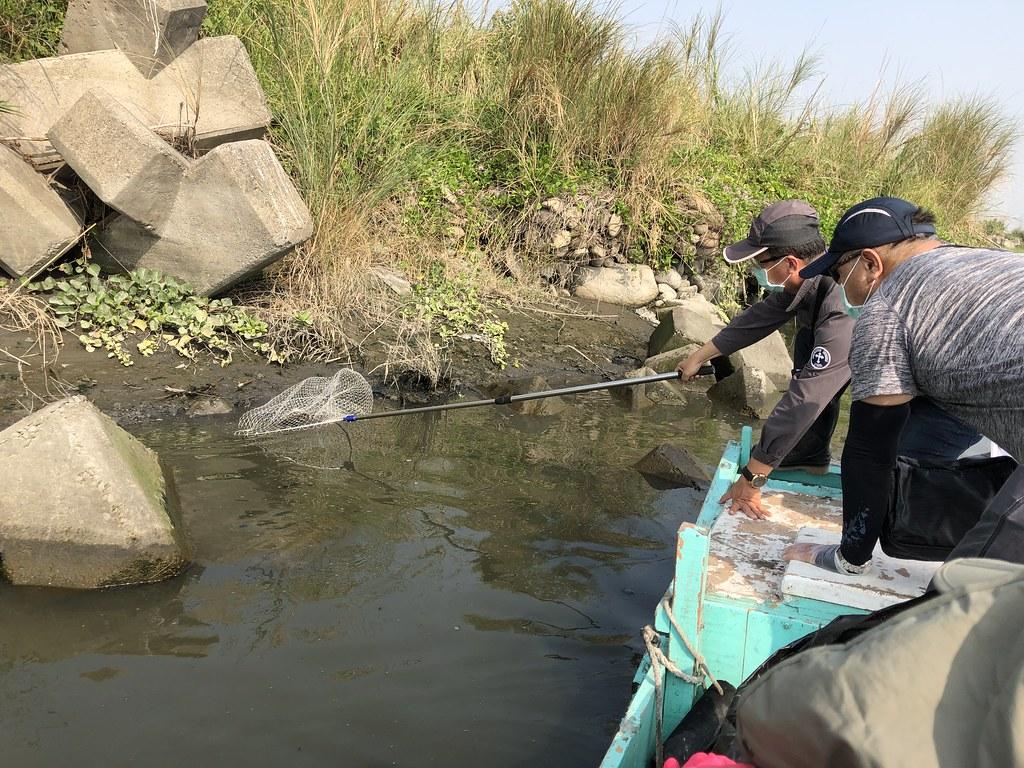 高屏溪再傳過境水鳥集體中毒,經鳥友通報,數個公、民團體一起巡守救治傷鳥。高雄市政府提供